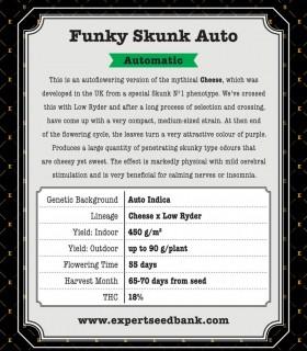 Funky Skunk Auto