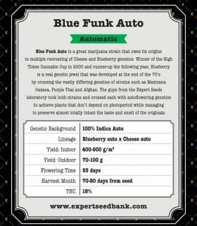 Blue Funk Auto