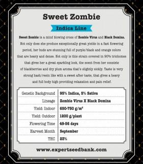 Sweet Zombie