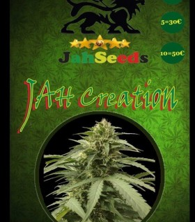 Jah Creation