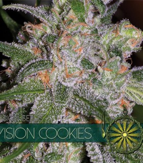 Vision Cookies by Vision Seeds