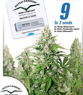 High Potency Autoflower Mix by Dutch Passion Seeds