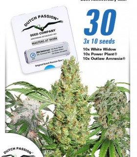 30th Anniversary XXL Mix by Dutch Passion Seeds