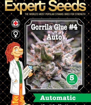 Gorrila Glue 4 Auto