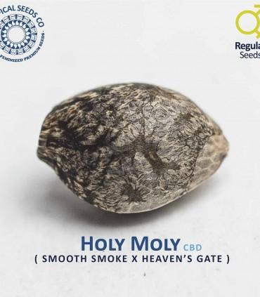 Holly Molly CBD Limited Ed