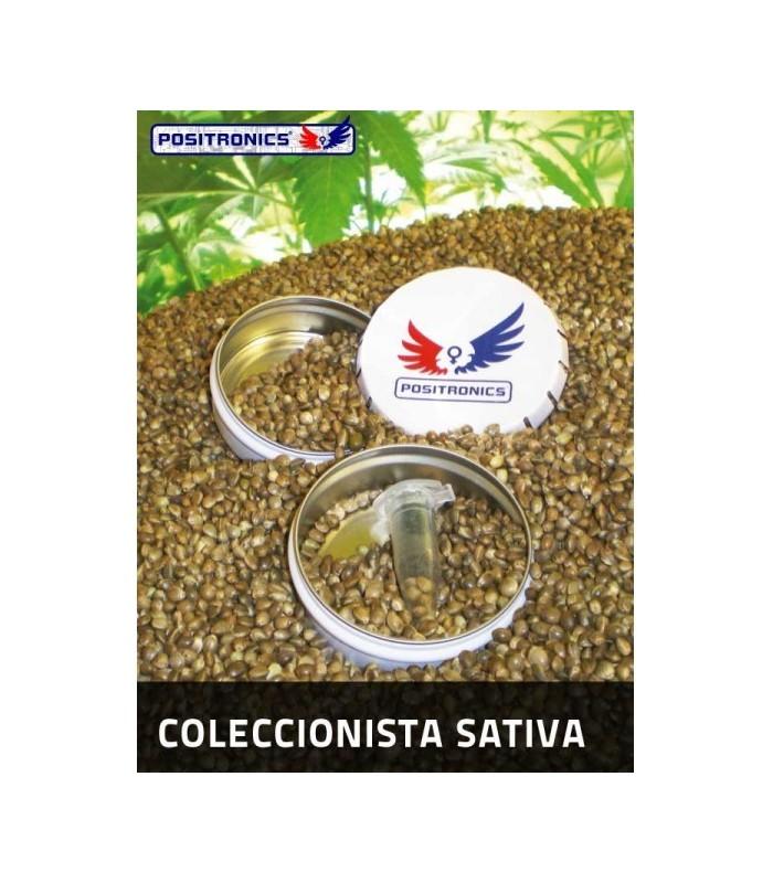 Coleccion Sativa