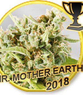 Mr. Mother Earth