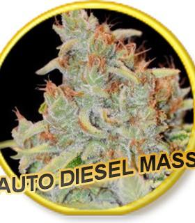 Auto Diesel Mass