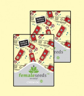 Chem OG by Female Seeds