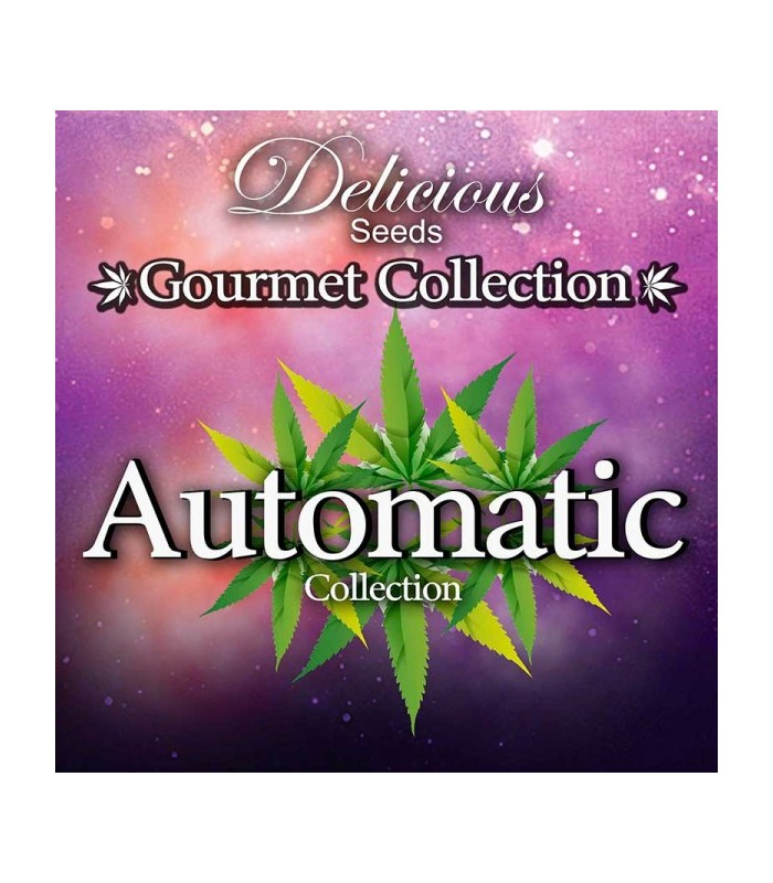 Automatic Gourmet Collection 2