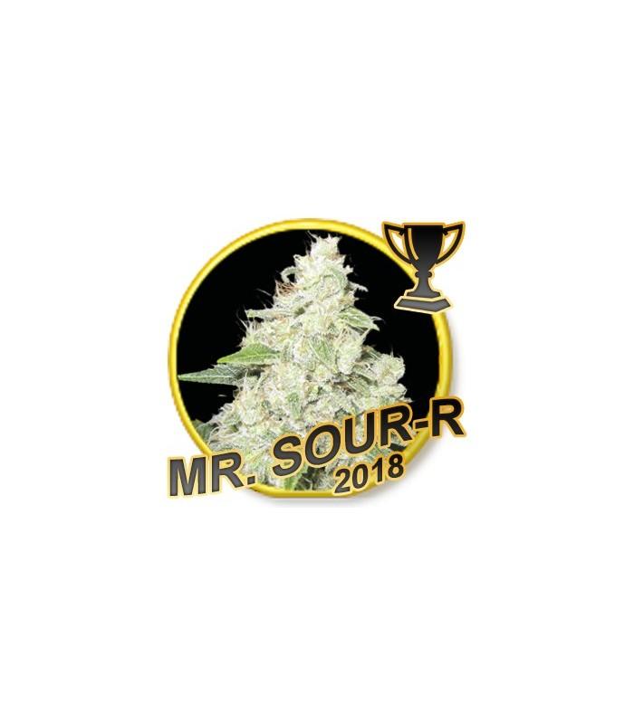 Mr. Sour-R