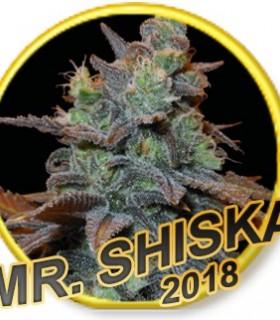 Mr. Shiska