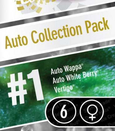 Auto Collection pack 1
