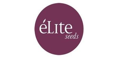 Élite Seeds