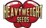Heavyweight Seeds